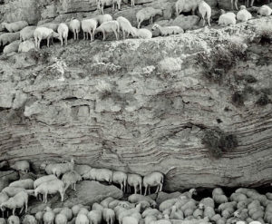 Gunes, kayalar, golge ve siginma... Doganin benzerligi... - Sun, rocks, shadow and taking refuge... Similarity of the nature...
